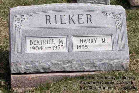 RIEKER, HARRY M. - Arapahoe County, Colorado | HARRY M. RIEKER - Colorado Gravestone Photos