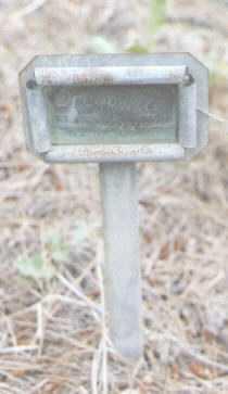 SMITH, OREGON A. - Archuleta County, Colorado | OREGON A. SMITH - Colorado Gravestone Photos