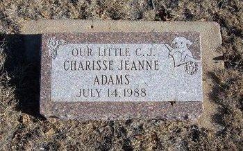 ADAMS, CHARISSE JEANNE - Baca County, Colorado | CHARISSE JEANNE ADAMS - Colorado Gravestone Photos