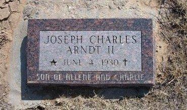 ARNDT, II, JOSEPH CHARLES - Baca County, Colorado   JOSEPH CHARLES ARNDT, II - Colorado Gravestone Photos
