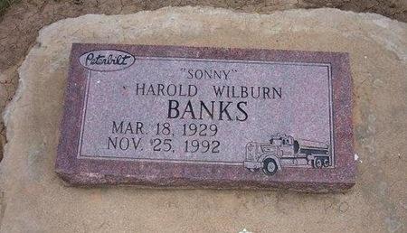 "BANKS, HAROLD WILBURN SONNY"" - Baca County, Colorado | HAROLD WILBURN SONNY"" BANKS - Colorado Gravestone Photos"
