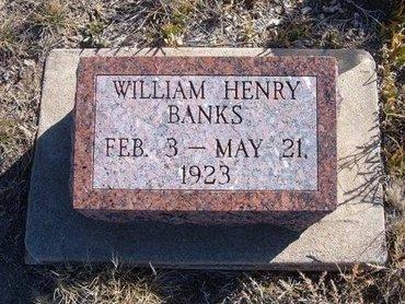 BANKS, WILLIAM HENRY - Baca County, Colorado | WILLIAM HENRY BANKS - Colorado Gravestone Photos