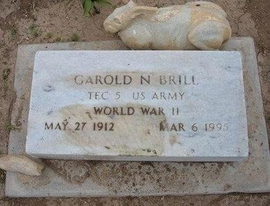 BRILL (VETERAN WWII), GAROLD NATHAN - Baca County, Colorado | GAROLD NATHAN BRILL (VETERAN WWII) - Colorado Gravestone Photos