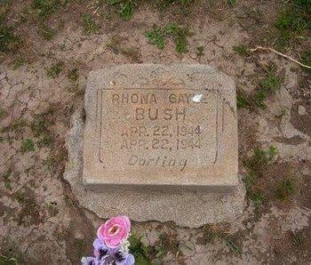 BUSH, RHONA GAYLE - Baca County, Colorado | RHONA GAYLE BUSH - Colorado Gravestone Photos