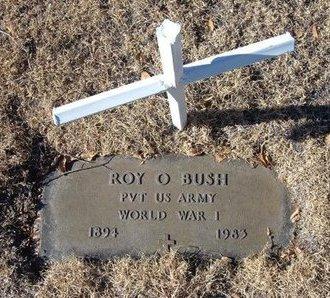 BUSH (VETERAN WWI), ROY O - Baca County, Colorado | ROY O BUSH (VETERAN WWI) - Colorado Gravestone Photos