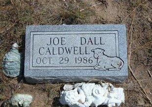 CALDWELL, JOE DALL - Baca County, Colorado | JOE DALL CALDWELL - Colorado Gravestone Photos