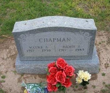 CHAPMAN, WAYNE A - Baca County, Colorado | WAYNE A CHAPMAN - Colorado Gravestone Photos