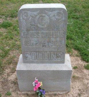 COLLINS, JAMES - Baca County, Colorado | JAMES COLLINS - Colorado Gravestone Photos