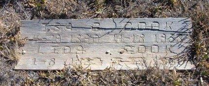 COOK, ISADORE G - Baca County, Colorado | ISADORE G COOK - Colorado Gravestone Photos