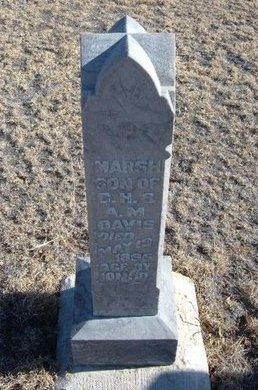 DAVIS, MARSH - Baca County, Colorado | MARSH DAVIS - Colorado Gravestone Photos