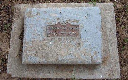 ELLIS, JAMES LEE - Baca County, Colorado | JAMES LEE ELLIS - Colorado Gravestone Photos