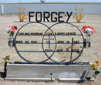FORGEY, LARRY LEWIS - Baca County, Colorado | LARRY LEWIS FORGEY - Colorado Gravestone Photos