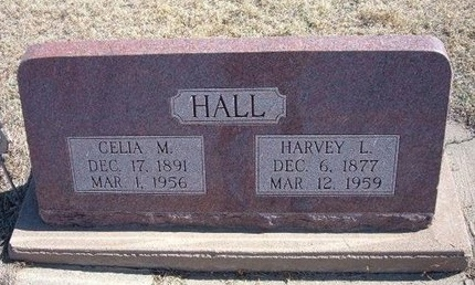 HALL, CELIA M - Baca County, Colorado | CELIA M HALL - Colorado Gravestone Photos