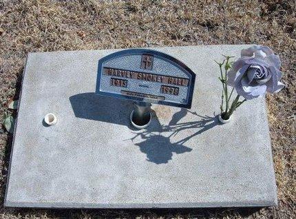HALL, HARVEY SMOKEY - Baca County, Colorado   HARVEY SMOKEY HALL - Colorado Gravestone Photos