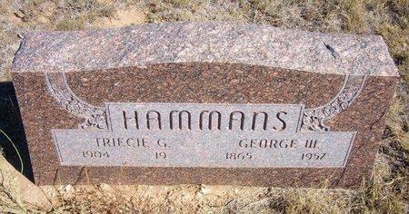 HAMMANS, GEORGE W - Baca County, Colorado | GEORGE W HAMMANS - Colorado Gravestone Photos