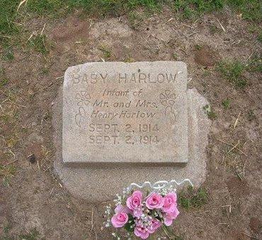 HARLOW, BABY - Baca County, Colorado   BABY HARLOW - Colorado Gravestone Photos