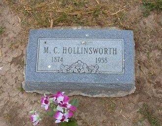 HOLLINSWORTH, M C - Baca County, Colorado | M C HOLLINSWORTH - Colorado Gravestone Photos