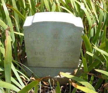 JAMES, LEWLYN W - Baca County, Colorado   LEWLYN W JAMES - Colorado Gravestone Photos
