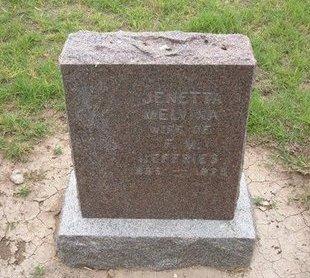 JEFFRIES, JENETTA MELVINA - Baca County, Colorado | JENETTA MELVINA JEFFRIES - Colorado Gravestone Photos