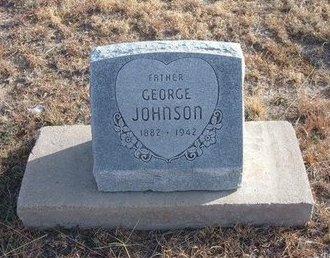 JOHNSON, GEORGE - Baca County, Colorado | GEORGE JOHNSON - Colorado Gravestone Photos