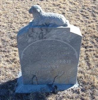 LAY, VIRGIE EVALEE - Baca County, Colorado   VIRGIE EVALEE LAY - Colorado Gravestone Photos