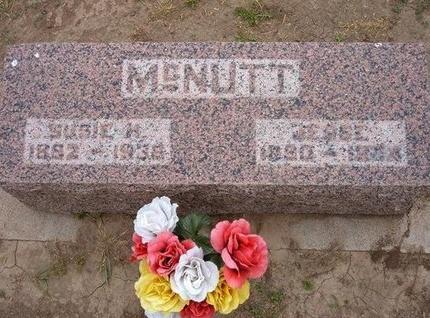 MCNUTT, JESSE - Baca County, Colorado | JESSE MCNUTT - Colorado Gravestone Photos