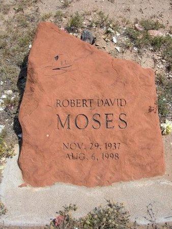 MOSES, ROBERT DAVID - Baca County, Colorado   ROBERT DAVID MOSES - Colorado Gravestone Photos