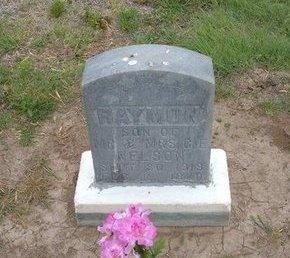 NELSON, RAYMON - Baca County, Colorado | RAYMON NELSON - Colorado Gravestone Photos