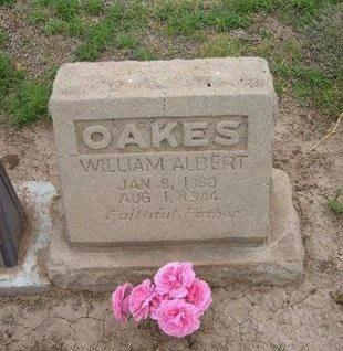 OAKES, WILLIAM ALBERT - Baca County, Colorado | WILLIAM ALBERT OAKES - Colorado Gravestone Photos