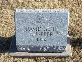 SHAFFER, DAVID GENE - Baca County, Colorado | DAVID GENE SHAFFER - Colorado Gravestone Photos