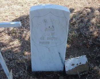 SPEARS (VETERAN UNION), DAVID - Baca County, Colorado | DAVID SPEARS (VETERAN UNION) - Colorado Gravestone Photos