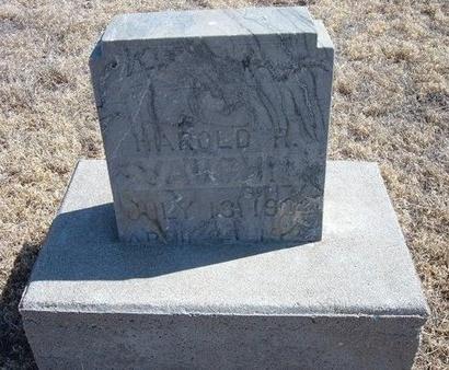VAUGHN, HAROLD R - Baca County, Colorado | HAROLD R VAUGHN - Colorado Gravestone Photos