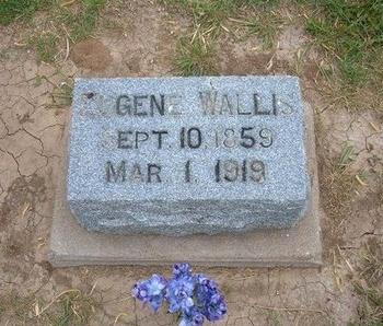 WALLIS, EUGENE - Baca County, Colorado   EUGENE WALLIS - Colorado Gravestone Photos