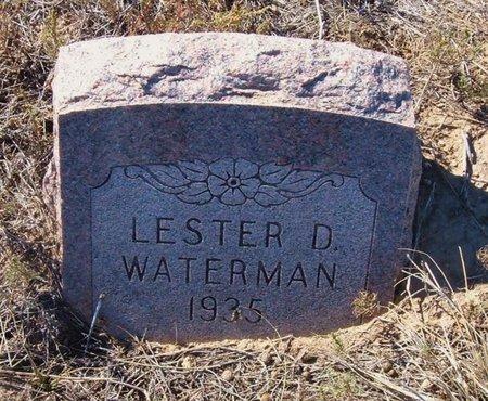 WATERMAN, LESTER D - Baca County, Colorado | LESTER D WATERMAN - Colorado Gravestone Photos