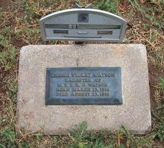 WATSON, DESSIE VIOLET - Baca County, Colorado | DESSIE VIOLET WATSON - Colorado Gravestone Photos