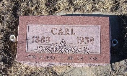 WILKINSON, CARL - Baca County, Colorado | CARL WILKINSON - Colorado Gravestone Photos