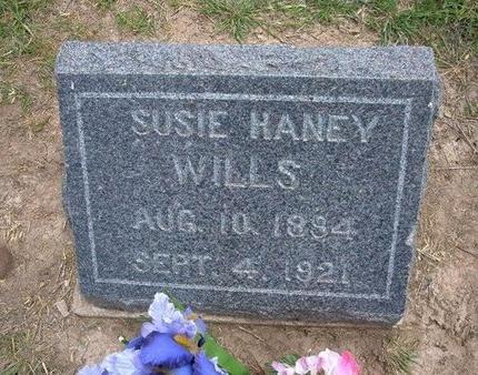 HANEY WILLS, SUSIE - Baca County, Colorado | SUSIE HANEY WILLS - Colorado Gravestone Photos
