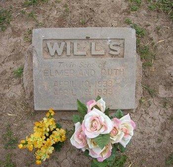 WILLS, TWIN SONS - Baca County, Colorado   TWIN SONS WILLS - Colorado Gravestone Photos