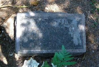 FALCONBURG, JACKIE LEE - Bent County, Colorado | JACKIE LEE FALCONBURG - Colorado Gravestone Photos