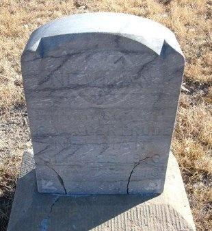NEWMAN, INFANT SON - Bent County, Colorado   INFANT SON NEWMAN - Colorado Gravestone Photos