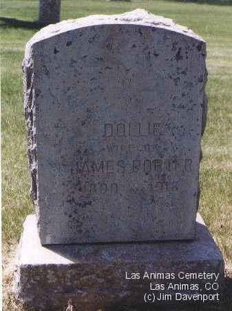 PORTER, DOLLIE - Bent County, Colorado | DOLLIE PORTER - Colorado Gravestone Photos