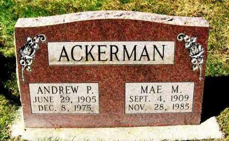 ACKERMAN, ANDREW P. - Boulder County, Colorado | ANDREW P. ACKERMAN - Colorado Gravestone Photos