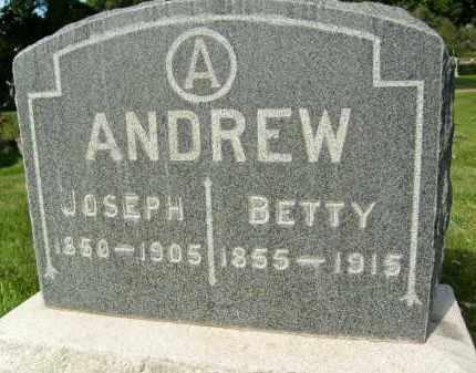 ANDREW, BETTY - Boulder County, Colorado | BETTY ANDREW - Colorado Gravestone Photos