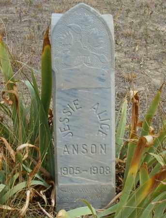 ANSON ANSON, JESSIE ALICE - Boulder County, Colorado   JESSIE ALICE ANSON ANSON - Colorado Gravestone Photos