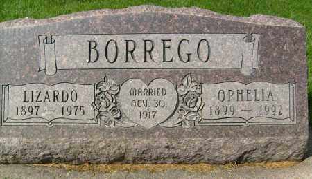 BORREGO, LIZARDO - Boulder County, Colorado | LIZARDO BORREGO - Colorado Gravestone Photos
