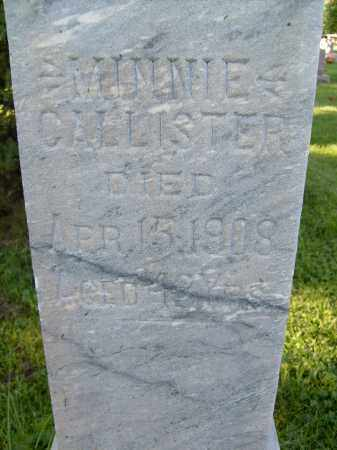 CALLISTER, MINNIE - Boulder County, Colorado | MINNIE CALLISTER - Colorado Gravestone Photos