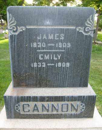 CANNON, EMILY - Boulder County, Colorado | EMILY CANNON - Colorado Gravestone Photos