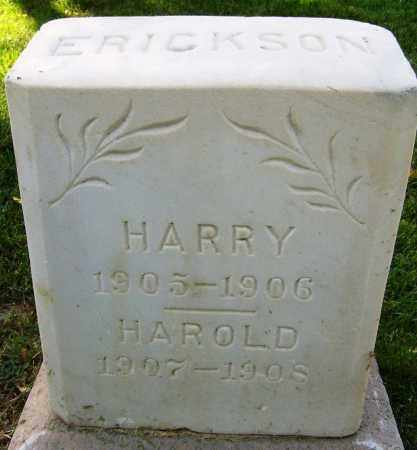 ERICKSON, HAROLD - Boulder County, Colorado | HAROLD ERICKSON - Colorado Gravestone Photos