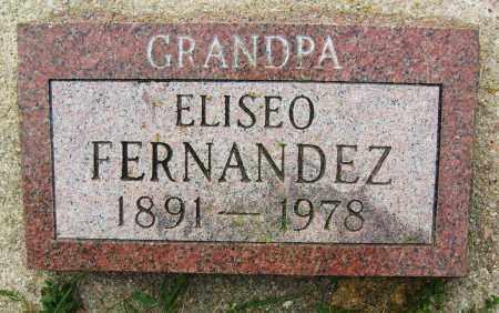 FERNANDEZ, ELISEO - Boulder County, Colorado   ELISEO FERNANDEZ - Colorado Gravestone Photos