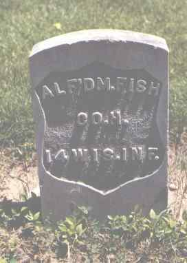 FISH, ALF'D M. - Boulder County, Colorado | ALF'D M. FISH - Colorado Gravestone Photos